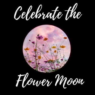 Super Flower Moon Concert 1
